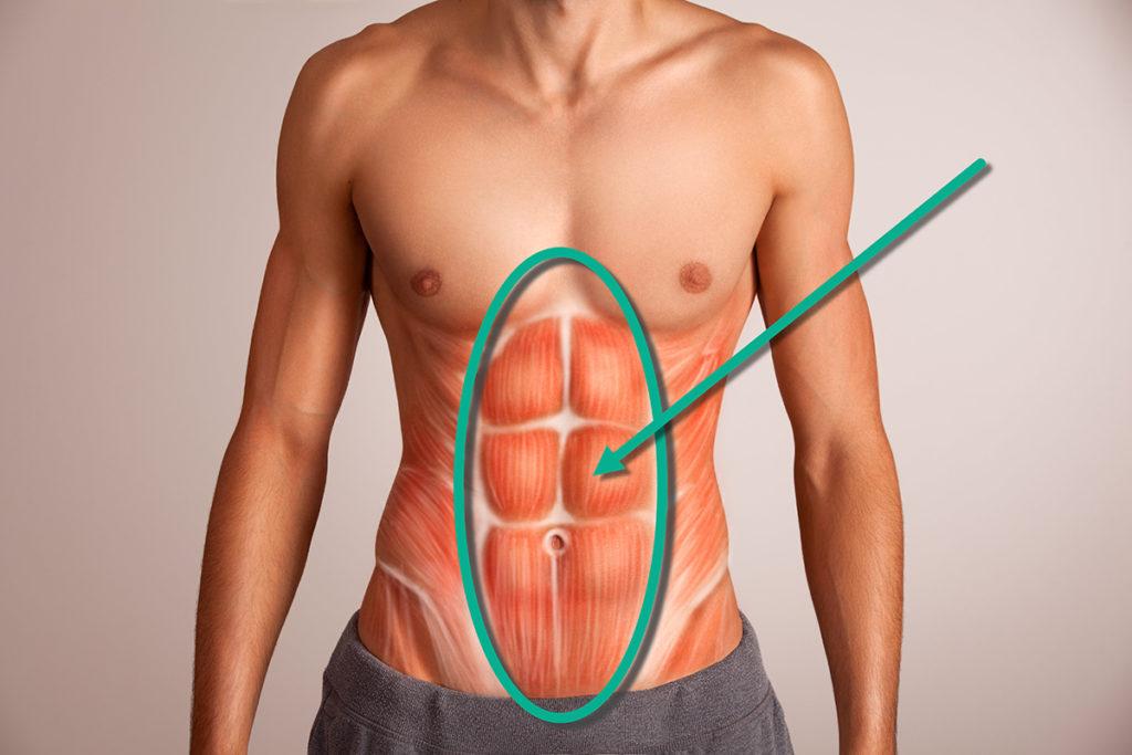 Was Du über Deinen Bauch wissen solltest - BigBlueStudio|Shutterstock.com